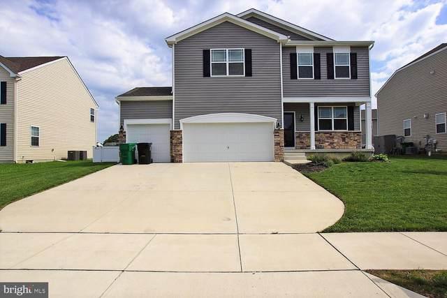 164 S Marshview Terrace, MAGNOLIA, DE 19962 (#DEKT249798) :: Blackwell Real Estate