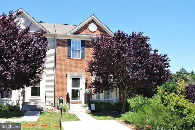 195 Oxbow Drive, STRASBURG, VA 22657 (#VASH122618) :: Berkshire Hathaway HomeServices McNelis Group Properties