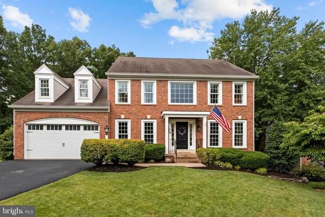 13923 South Springs Drive, CLIFTON, VA 20124 (#VAFX1209560) :: RE/MAX Advantage Realty