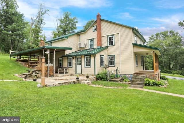 1306 Hawk Mountain, KEMPTON, PA 19529 (#PABK379268) :: REMAX Horizons