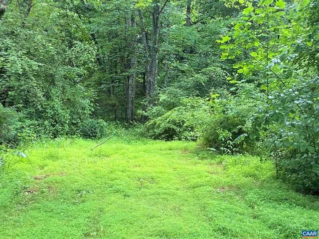 3336 Old Lynchburg Road, NORTH GARDEN, VA 22959 (#618728) :: Great Falls Great Homes