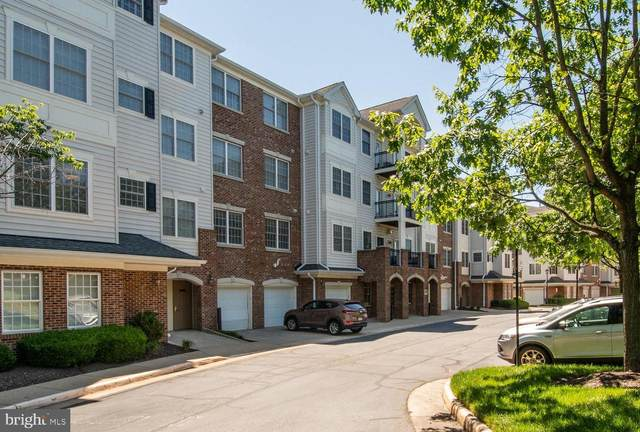 20804 Noble #207, STERLING, VA 20165 (#VALO441742) :: The Lutkins Group