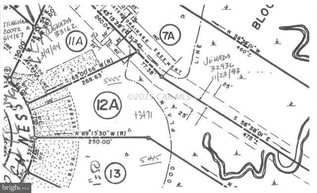 5455 Loch Ness Terrace, SALISBURY, MD 21801 (#1001561954) :: Brandon Brittingham's Team