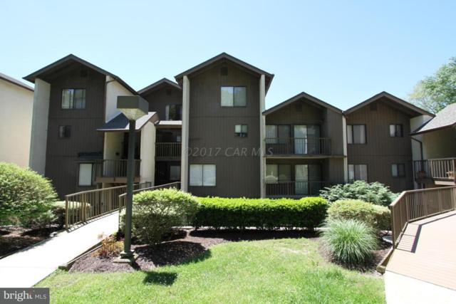 228 Canal Park Drive G4, SALISBURY, MD 21804 (#1001564288) :: RE/MAX Coast and Country