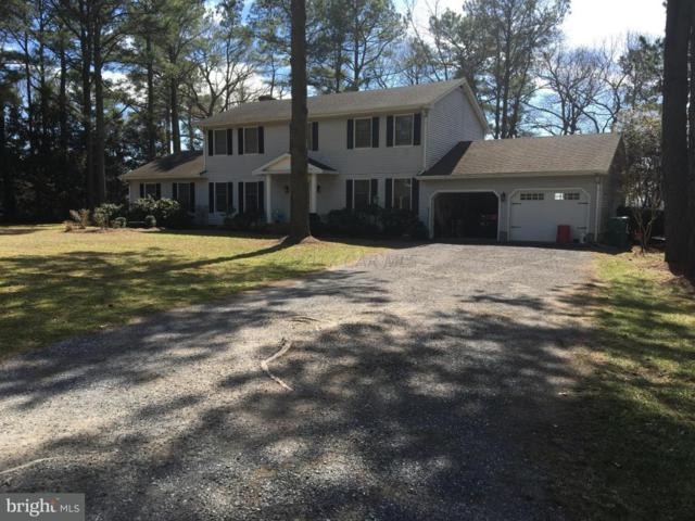 10648 Piney Island Drive, BISHOPVILLE, MD 21813 (#1001560196) :: RE/MAX Coast and Country
