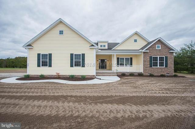 Lot 2 Northampton Drive, SALISBURY, MD 21804 (#1001562134) :: The Allison Stine Team