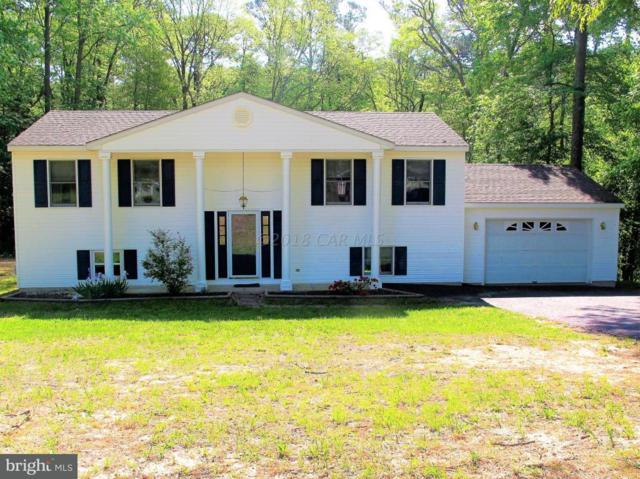 6125 Rockawalkin Road, SALISBURY, MD 21801 (#1001563324) :: The Rhonda Frick Team