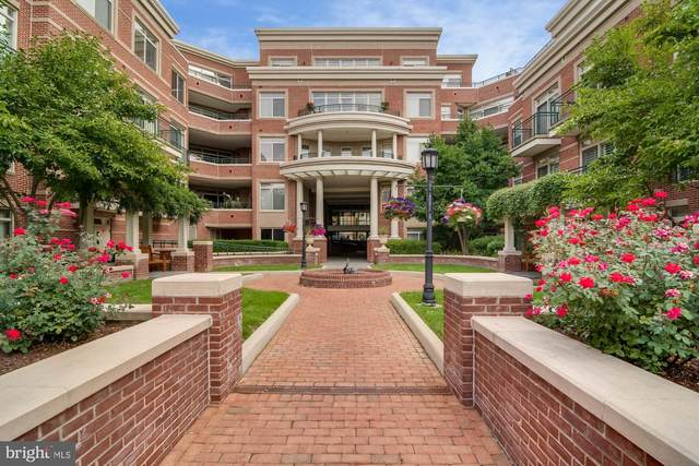 66 Franklin Street #203, ANNAPOLIS, MD 21401 (#MDAA2000014) :: City Smart Living