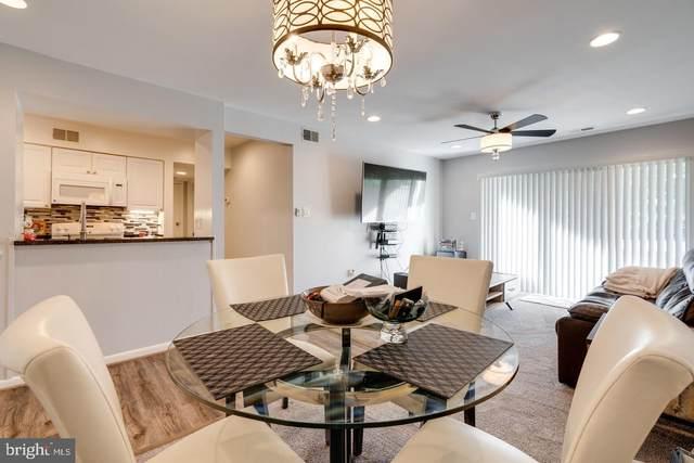 5803 Royal Ridge Drive M, SPRINGFIELD, VA 22152 (#VAFX2000074) :: Sunrise Home Sales Team of Mackintosh Inc Realtors