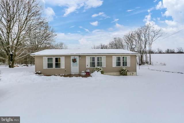 10915 Burkett Road, GREENCASTLE, PA 17225 (#PAFL2000010) :: Mortensen Team