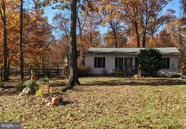 45 Gray Squirrel Rd, HARPERS FERRY, WV 25425 (#WVJF2000018) :: BayShore Group of Northrop Realty