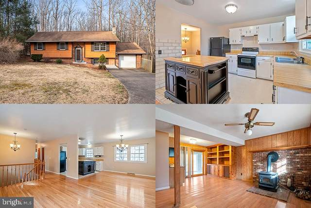 289 Stony Hill Road, FREDERICKSBURG, VA 22406 (#VAST2000032) :: City Smart Living