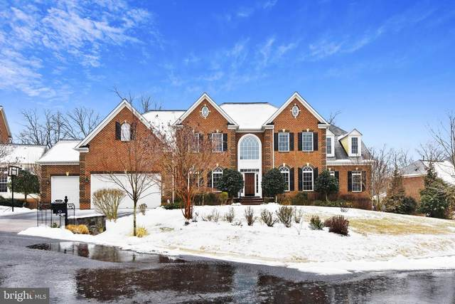 12209 Greenbriar Branch Drive, POTOMAC, MD 20854 (#MDMC2000206) :: AJ Team Realty