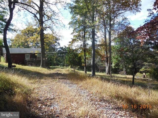 1386 Khyber Pass, LINDEN, VA 22642 (#VAWR2000004) :: Dart Homes