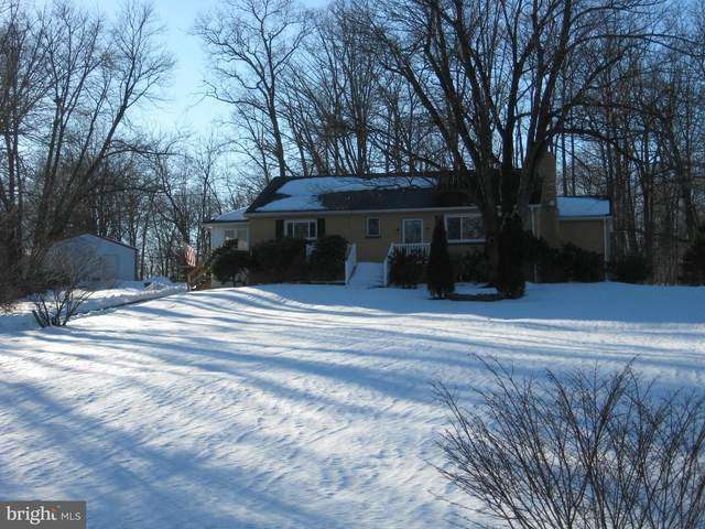 1517 Red Hill Road, ELVERSON, PA 19520 (#PABK2000076) :: Century 21 Dale Realty Co