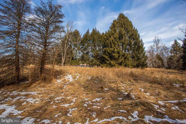 Lot 1 Haviland Mill Road, CLARKSVILLE, MD 21029 (#MDHW2000094) :: City Smart Living