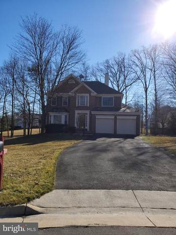 8420 Cleveland Bay Court, GAINESVILLE, VA 20155 (#VAPW2000150) :: Sunrise Home Sales Team of Mackintosh Inc Realtors