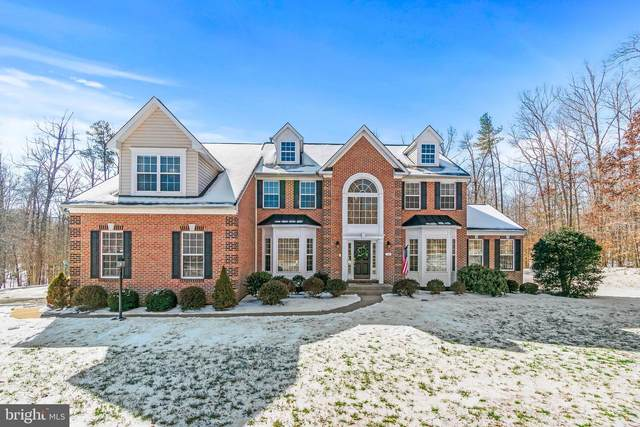 14 Mills Hollow Drive, FREDERICKSBURG, VA 22406 (#VAST2000078) :: Network Realty Group