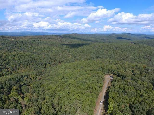 220 BLUFFS ON THE POTOMAC, ROMNEY, WV 26757 (#WVHS2000001) :: CENTURY 21 Core Partners