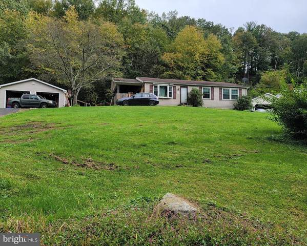 159 Greenbriar Road, ELLIOTTSBURG, PA 17024 (#PAPY2000003) :: The Dailey Group
