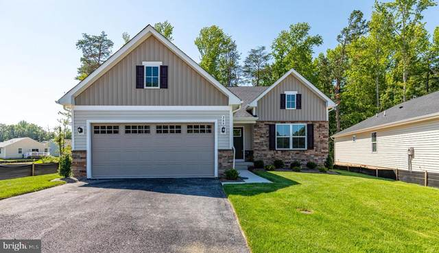 366 East Calvert Xing, NORTH EAST, MD 21901 (#MDCC2000019) :: The Putnam Group