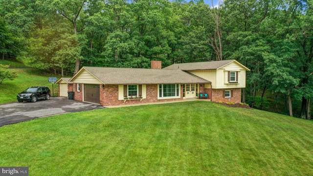 12505 Henry Drive SW, LAVALE, MD 21502 (#MDAL2000024) :: Peter Knapp Realty Group