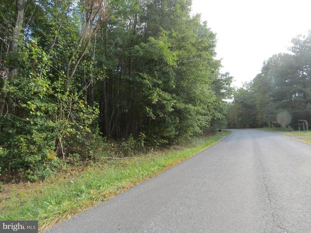 0 Grasty Goldmine Road, RHOADESVILLE, VA 22542 (#VAOR2000009) :: RE/MAX Cornerstone Realty