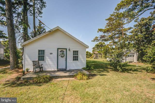3607 Green Point Road, EAST NEW MARKET, MD 21631 (#MDDO2000009) :: The Putnam Group