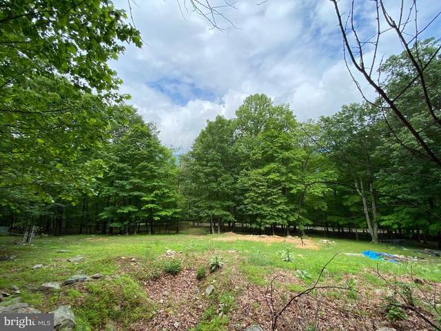 Lot 4 Dominion Trail, BERKELEY SPRINGS, WV 25411 (#WVMO2000008) :: The Redux Group