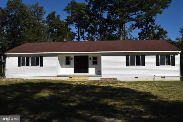 32591 Meadow Branch Drive, LAUREL, DE 19956 (#DESU2000075) :: The Dailey Group
