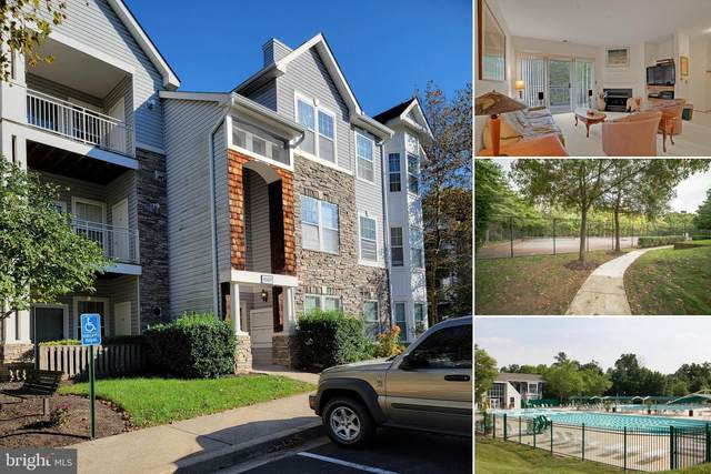 3507 Piney Woods Place B102, LAUREL, MD 20724 (#MDAA2000157) :: The Miller Team