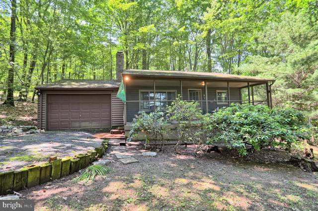 32 Brandywine Lane, ICKESBURG, PA 17037 (#PAPY2000018) :: TeamPete Realty Services, Inc