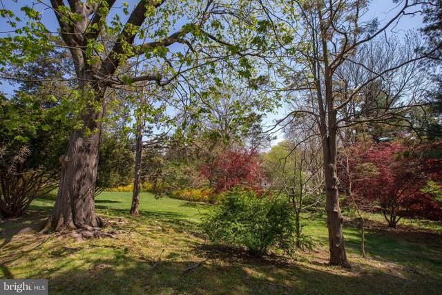 315 W Bridge Street, NEW HOPE, PA 18938 (MLS #PABU2000316) :: Kiliszek Real Estate Experts