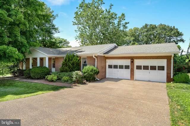 300 Greenfield Avenue, WINCHESTER, VA 22602 (#VAFV2000064) :: AJ Team Realty