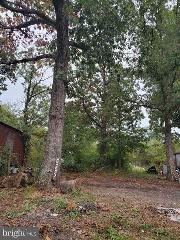 681 White Oak, STEPHENS CITY, VA 22655 (#VAFV2000053) :: Nesbitt Realty