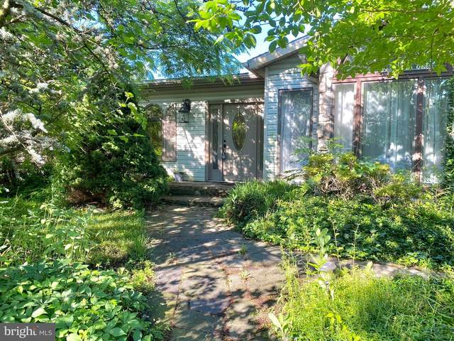 35 Odaniel Avenue, NEWARK, DE 19711 (#DENC2000246) :: Linda Dale Real Estate Experts