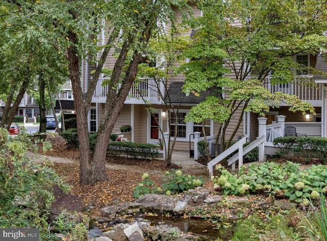 5715 Chapman Mill Drive 360/1606, ROCKVILLE, MD 20852 (#MDMC2000431) :: Dart Homes