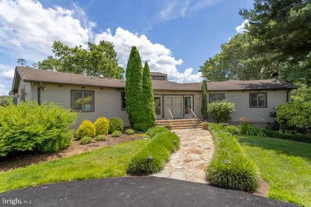 2636 Peach Grove Road, LOUISA, VA 23093 (#VALA2000018) :: Debbie Dogrul Associates - Long and Foster Real Estate