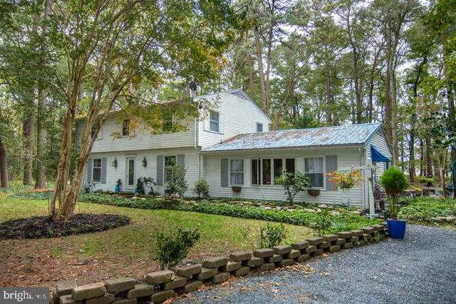 3316 Jamaica Point Road, TRAPPE, MD 21673 (MLS #MDTA2000033) :: Maryland Shore Living | Benson & Mangold Real Estate