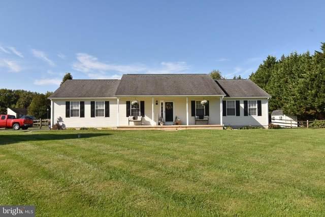 301 Garnet Lane, SMYRNA, DE 19977 (#DENC2000235) :: Your Home Realty