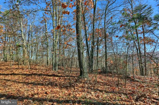 Lot G2 Eagle's Roost Ln, JAMES CREEK, PA 16657 (#PAHU2000012) :: The Heather Neidlinger Team With Berkshire Hathaway HomeServices Homesale Realty