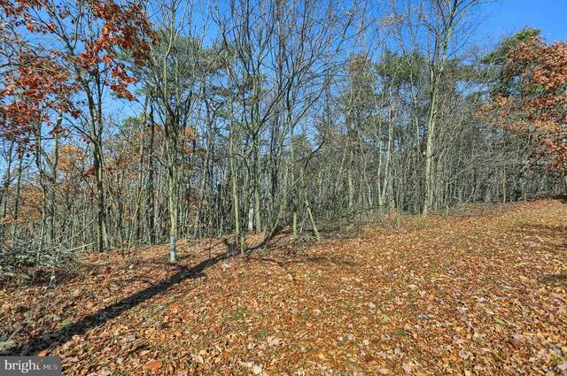Lot G-1 Eagles Roost, JAMES CREEK, PA 16657 (#PAHU2000014) :: The Heather Neidlinger Team With Berkshire Hathaway HomeServices Homesale Realty