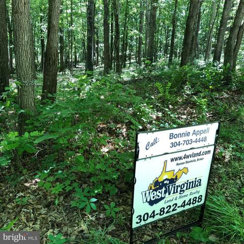 Rock Creek Trail, AUGUSTA, WV 26704 (#WVHS2000016) :: Revol Real Estate