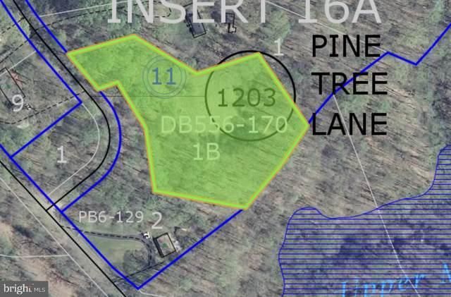 Pine Tree Ln, KING GEORGE, VA 22485 (#VAKG2000016) :: The MD Home Team