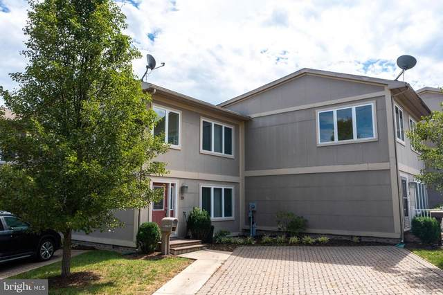 19 James Day Drive, CUMBERLAND, MD 21502 (#MDAL2000041) :: Keller Williams Realty Centre