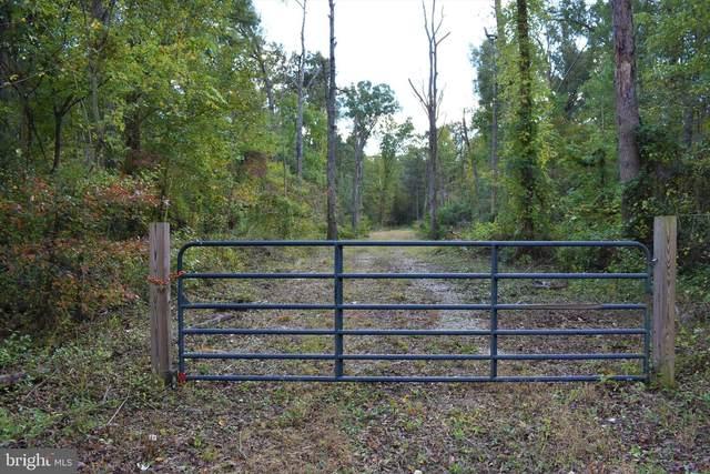 0 Willow Grove, CAMDEN WYOMING, DE 19901 (#DEKT2000133) :: Your Home Realty