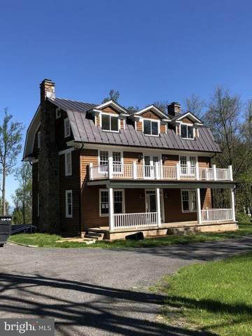 17345 Raven Rocks Road, BLUEMONT, VA 20135 (#VALO2000512) :: Pearson Smith Realty