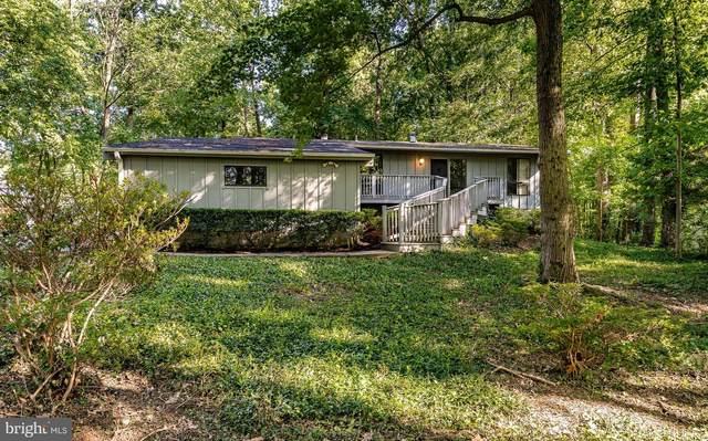 449 W Chestnut Hill Road, NEWARK, DE 19713 (#DENC2000334) :: REMAX Horizons