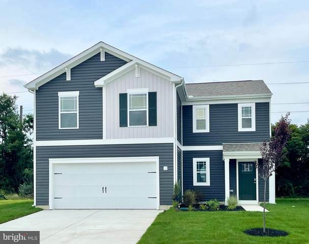 30085 Indian Cottage Road, PRINCESS ANNE, MD 21853 (#MDSO2000013) :: At The Beach Real Estate