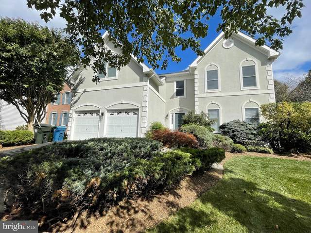 43680 Primanti Street, CHANTILLY, VA 20152 (#VALO2000291) :: Betsher and Associates Realtors